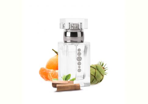 ESSENS Perfume men m030 50 ml
