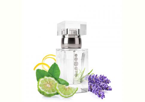 ESSENS Perfume men m037 50 ml