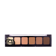 Correct & Conceal Palette 02