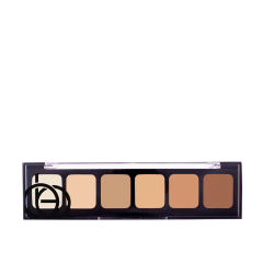 Correct & Conceal Palette 01